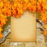 在老砖墙上的老纸目录有明亮的橙色叶子的 图库摄影