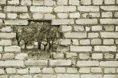 在老砖墙的一个孔 免版税库存照片