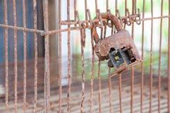 在老笼子的老锁 图库摄影