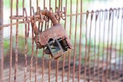 在老笼子的老锁 免版税库存照片