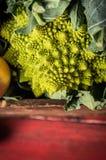 在老箱子的Romanesco圆白菜在红色木背景 免版税图库摄影