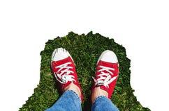 在老红色运动鞋的腿在绿草 在视图之上 co 免版税库存照片