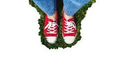 在老红色运动鞋的腿在绿草 在视图之上 co 库存照片