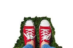在老红色运动鞋的腿在绿草 在视图之上 co 免版税图库摄影