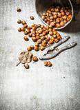 在老罐的坚果 图库摄影