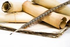 在老羊皮纸和scro板料背景的鸟羽毛  库存照片