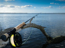 在老美洲红树的钓鱼竿和卷轴 库存图片