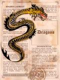 在老葡萄酒书页的愤怒的龙图画 库存例证