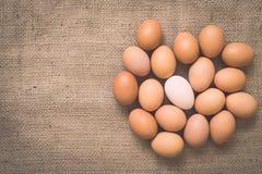 在老被弄皱的粗麻布的鸡蛋 库存照片
