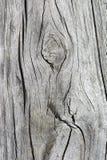 在老铁路睡眠者的抽象木五谷 库存图片