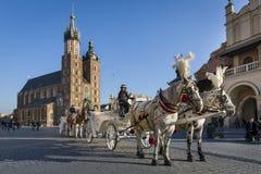 在老镇中心的观光马车在克拉科夫,波兰。 免版税库存图片