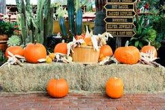 在老镇的秋天装饰在圣地亚哥,加利福尼亚 库存照片
