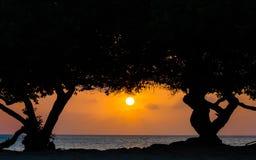 在老鹰海滩,阿鲁巴的日落 免版税库存照片