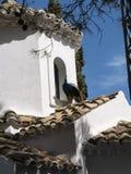 在老鼠海岛上的教堂有在科孚岛希腊海岛上的孔雀的  免版税库存图片