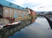 在老仓库附近的海鸥飞行沿小樽运河,著名吸引力在小樽镇 免版税库存图片