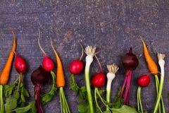 在老黑暗的书桌上的菜:嫩胡萝卜,大蒜,甜菜根,萝卜 看法从上面,顶面演播室射击 免版税库存图片