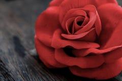 在老年迈的木头的红色玫瑰 库存照片