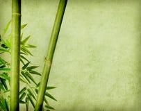 在老grunge古董纸张的竹子 免版税库存照片