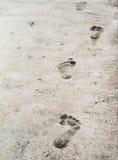在老stoneed纹理地板上的赤脚版本记录 免版税库存照片