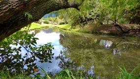 在考古学公园Pumapungo,昆卡省,厄瓜多尔的pÐ ¾ nd 免版税图库摄影