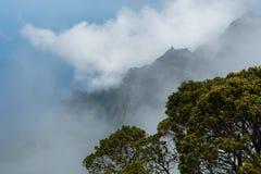 在考艾岛,夏威夷的美好的Kalalau监视远景 免版税库存照片