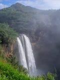 在考艾岛,夏威夷的Wailua瀑布 图库摄影