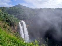 在考艾岛,夏威夷的Wailua瀑布 免版税库存图片