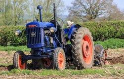 在耕的比赛的老蓝色fordson少校拖拉机 免版税库存图片