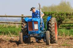 在耕的比赛的老蓝色fordson少校拖拉机 免版税库存照片