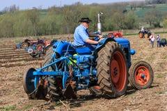 在耕的比赛的老蓝色fordson少校拖拉机 库存图片