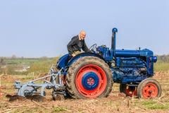 在耕的比赛的老蓝色fordson拖拉机 库存照片