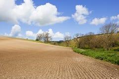 在耕种的土壤的样式 库存图片