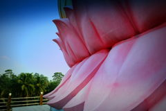 在耸立的安装的菩萨,斯里兰卡下的桃红色莲花瓣 免版税库存照片