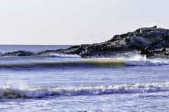 在肉食海湾的海浪 免版税图库摄影