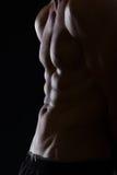 在肌肉男性躯干的特写镜头 库存图片