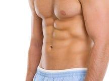 在肌肉躯干的特写镜头 免版税库存图片