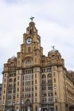 在肝脏大厦的肝脏鸟在利物浦英国 免版税库存图片