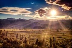 在肥沃平原的美好的日落在克罗地亚 免版税库存照片
