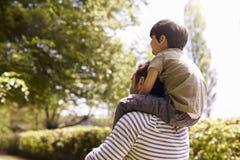 给在肩膀的父亲背面图儿子乘驾在步行期间 库存照片