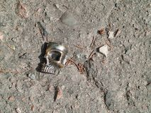 在肮脏的沥青的残破的塑料头骨形象与石头 免版税库存照片