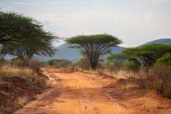 在肯尼亚的大草原的路 免版税库存照片