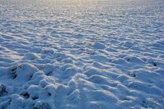 在背后照明的雪小山 图库摄影