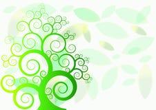 在背景叶子的绿色树 库存照片