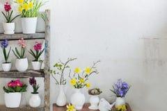 在背景白色墙壁上的复活节装饰 免版税图库摄影