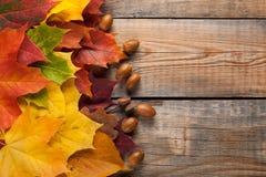 在背景的五颜六色的秋叶黑暗的老木头 与拷贝空间的顶视图 免版税库存图片