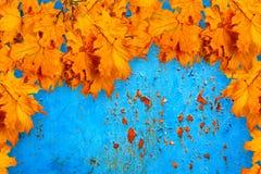 在背景的明亮的橙色秋叶生锈wal 库存图片