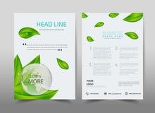 在背景的绿色生态设计 小册子模板布局 免版税图库摄影