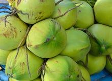 在背景的绿色椰子 免版税库存图片