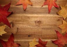 在背景的黄色红色秋叶 免版税图库摄影