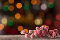 在背景bokeh的红色莓果 免版税库存照片